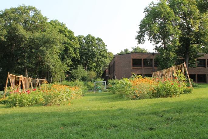 The UST Stewardship Garden. July 2014
